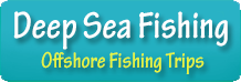 Deep Sea Fishing Offshore Fishing